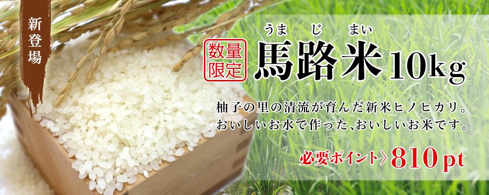 【数量限定】馬路米(10kg / 新米)